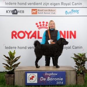 56 ste hondententoonstelling: Dogshow de Baronie